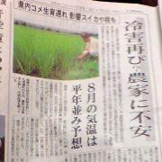 Dsc00639_reigai_shinmai